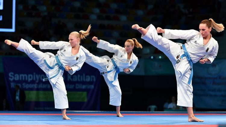Image result for karate